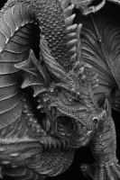 Dragon Wall Ornament - 2 Parts