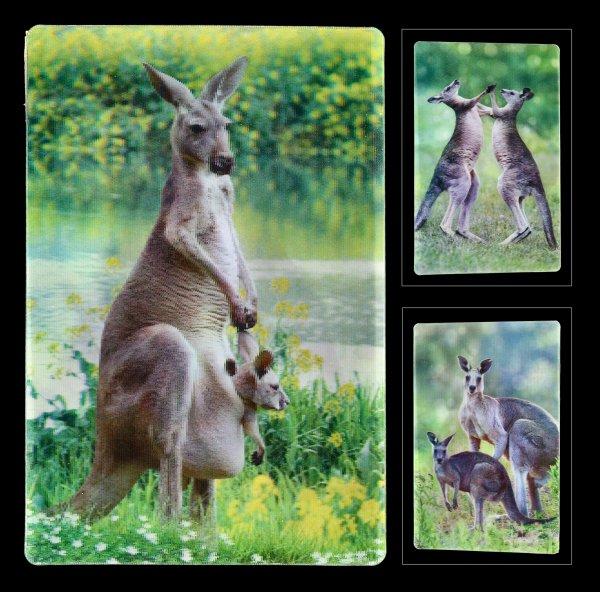 3D Postcard - Kangaroos