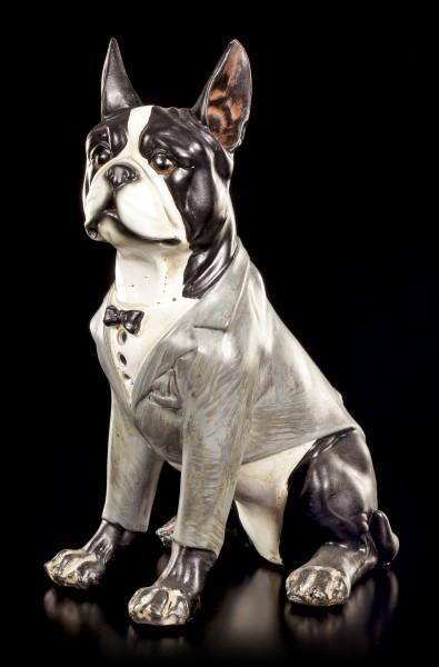 Lustige Hunde Figur - Franz. Bulldogge - Curious Dogs
