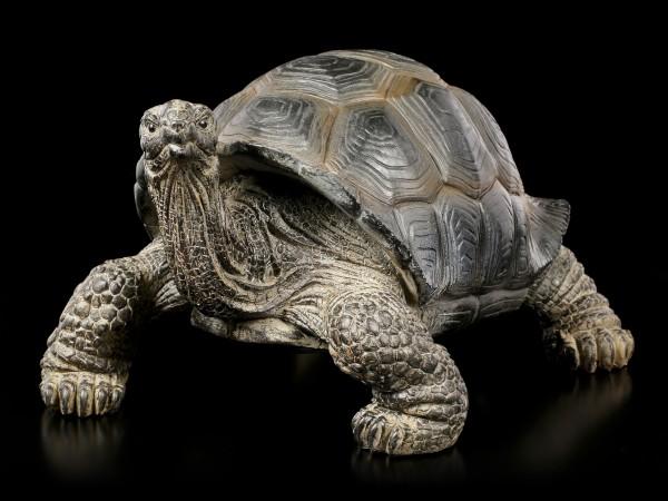 Land-Schildkröten Figur