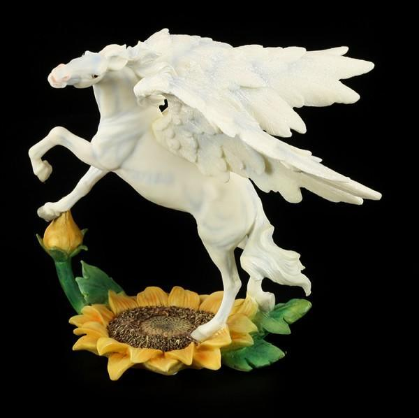 Faerie Glen - Pegasus - Evolosun