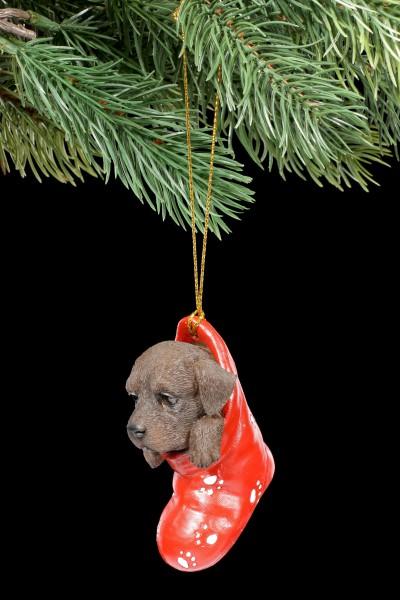 Christbaumschmuck Hund - Chocolate Labrador im Strumpf