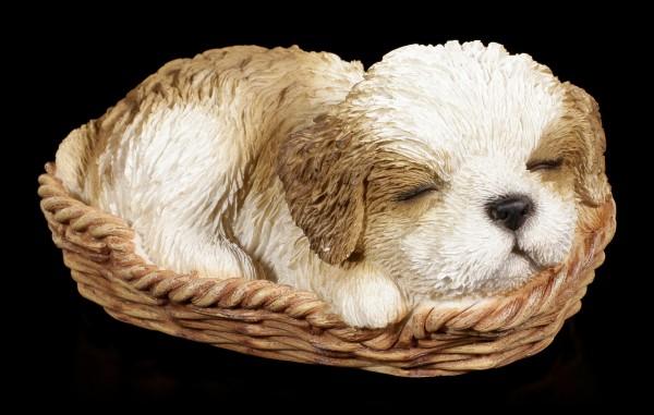 Hund in Körbchen Figur - Shih Tzu