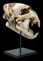 Löwen Totenkopf auf Metall Ständer