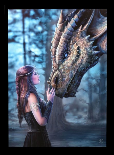 Large Canvas with Dragon - Once Upon a Time