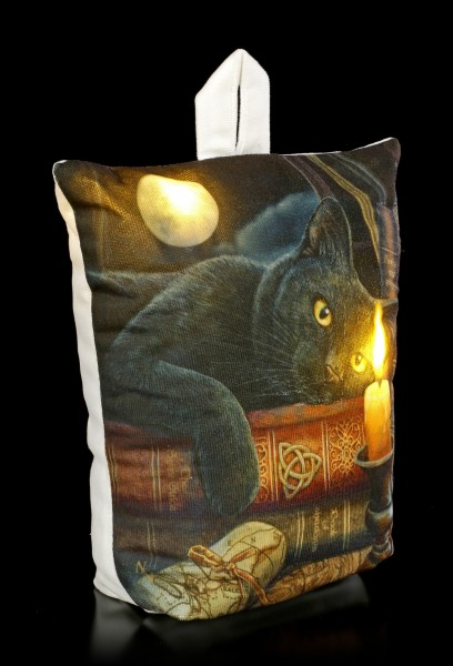 Doorstop with LED and Cat - The Witching Hour