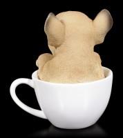 Dog in Cup - French Bulldog