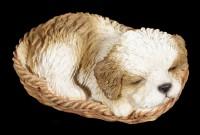Dog in Basket Figurine - Shih Tzu
