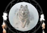 Großer Traumfänger mit Wolf - Run Wild