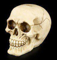 Skull Money Bank - Greedy Grin