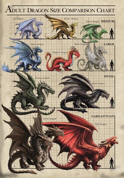 Grußkarte - Age Of Dragons - Drachen Größentabelle
