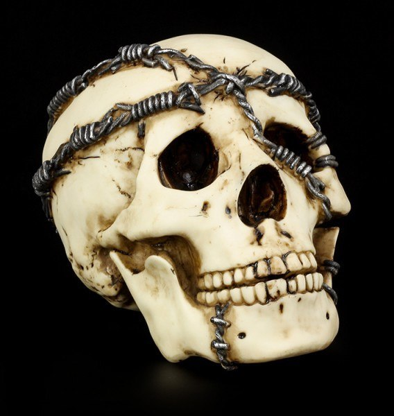 Skull with Barbwire