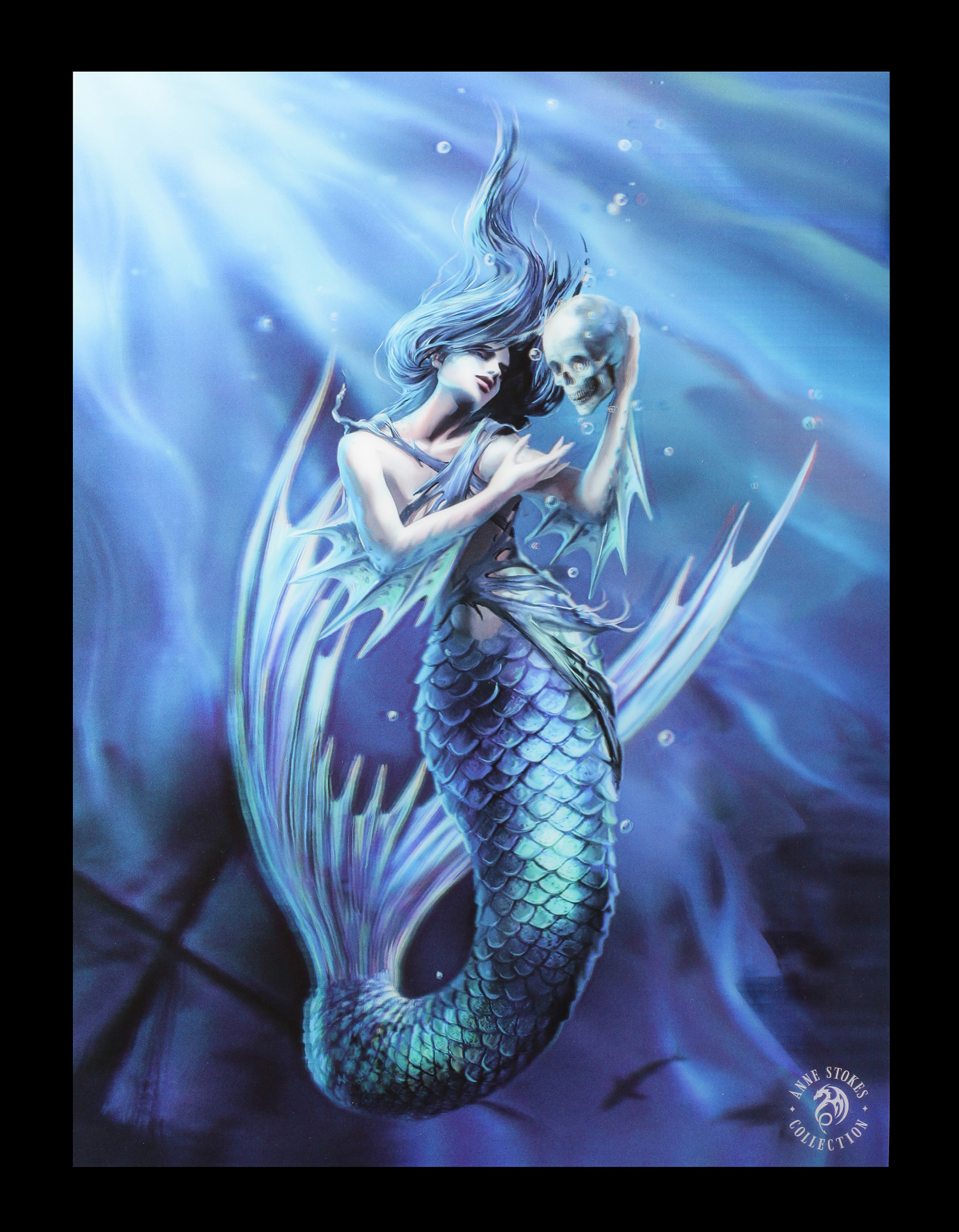 Meerjungfrauen Bilder