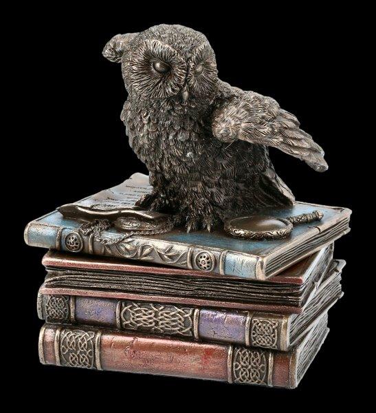 Schatulle - Schneeeule auf alten Büchern