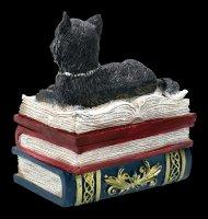 Schatulle - Katze auf roten Büchern