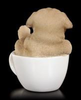 Dog in Cup mini - Pug Puppy