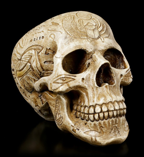 Skull with Hieroglyphics - The Egyptian