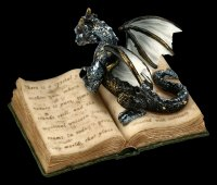 Dragon Box - Guardians of the Words