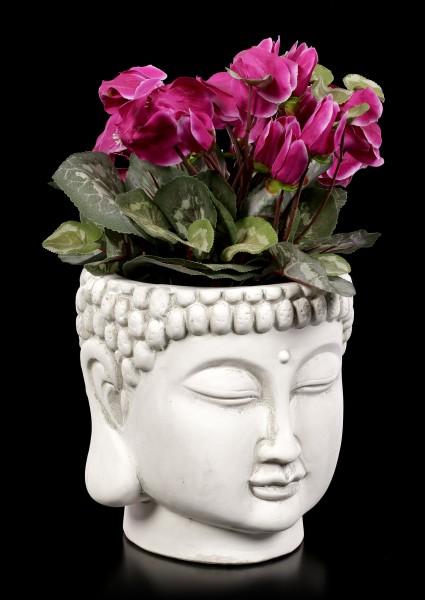 Vorschau: Terrakotta Blumentopf - Buddha Kopf