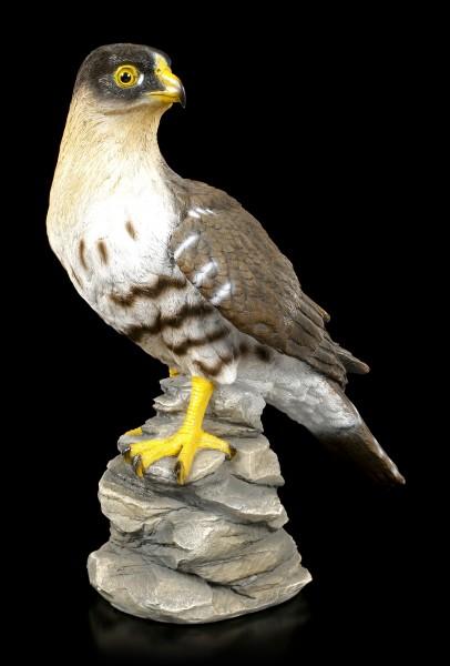 Gartenfigur - Falke schaut sich um