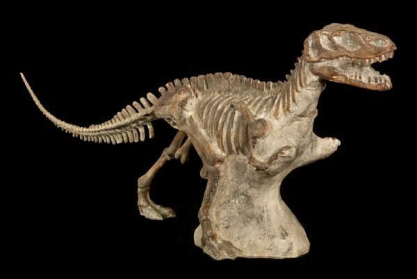 Dinosaurier Figur - Tyranosaurus Rex Fossil - riesig