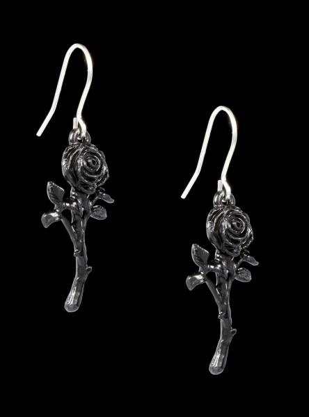 Alchemy Ohrringe - Romance Of The Black Rose