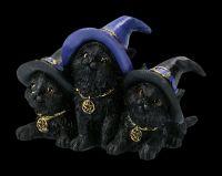 Hexen Katzen Figuren mit Hut - Familiar Felines