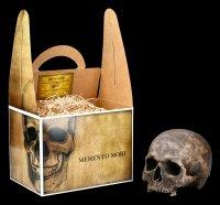 Skull Replica - Nahira Human Cranium - Dark