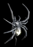 Wall Lamp - Large Spider with LED - Cable junction