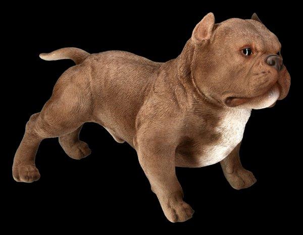 Dog Figurine - American Bully