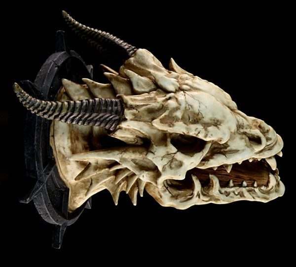 Dragon Head Wall Mount - Jabberwocky