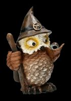 Funny Owl Figurine Set of 3 - Wizards