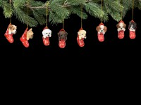 Christmas Tree Decoration Dog - Labrador in Stocking