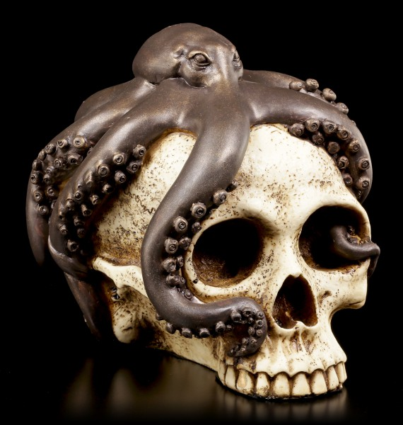 Skull with Octopus