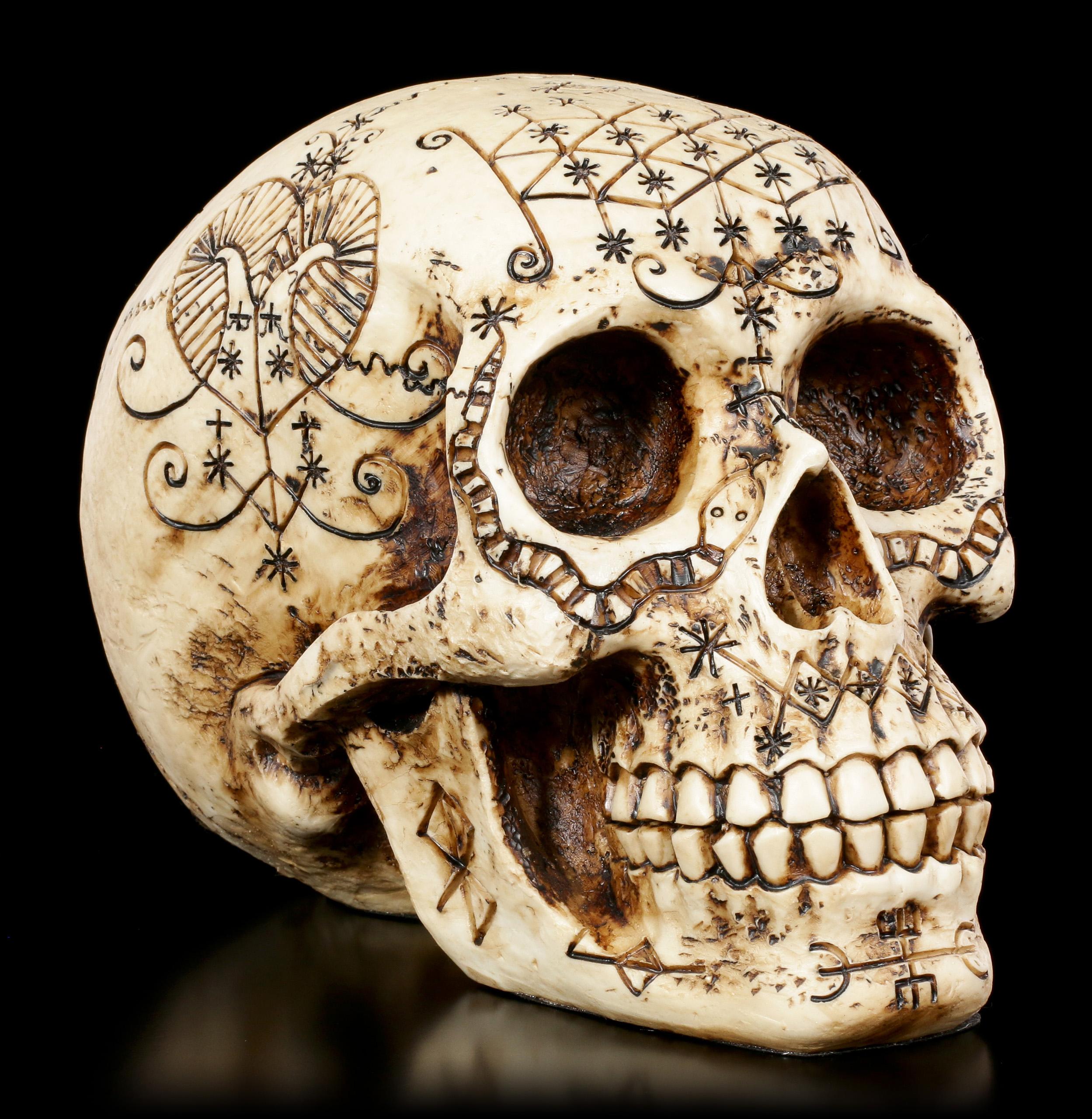 боковой механический череп картинки касается восприятия греками