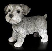 Dog Figurine - Schnauzer Puppy
