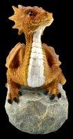 Dragon Figurine - Home is where my dragon is