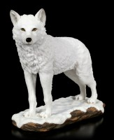 Polar Wolf Figurine is Standing in Snow