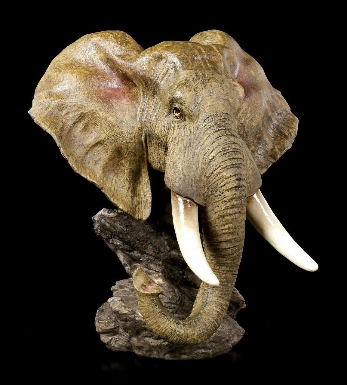 Große Elefantenkopf Büste - Steppen Riese