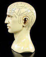 Phrenologie Kopf