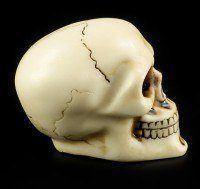 Gear Knob - Skull