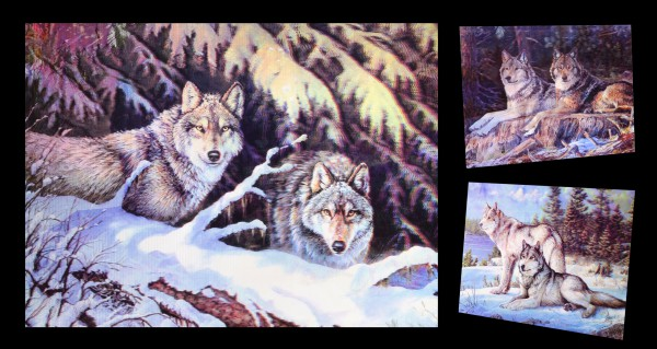 3D-Bild 3in1 mit Wölfen - Wolf Couple
