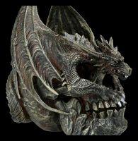 Drache auf Totenkopf - Draco Skull