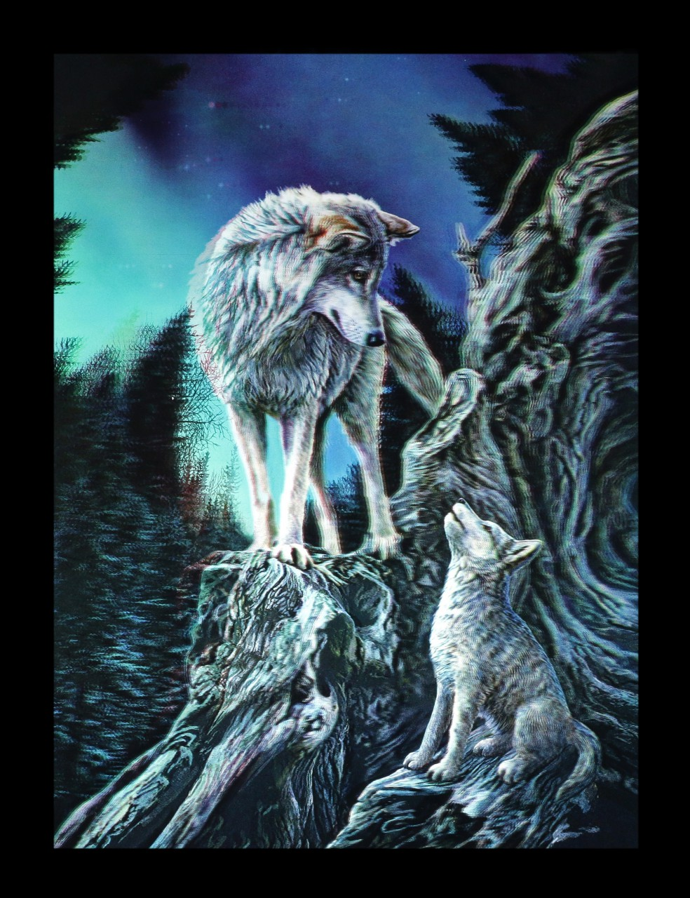 3D Picture with Wolves - Guidance