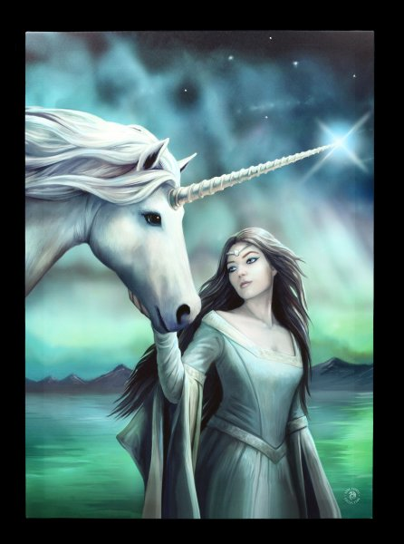 Large Canvas with Unicorn - North Star