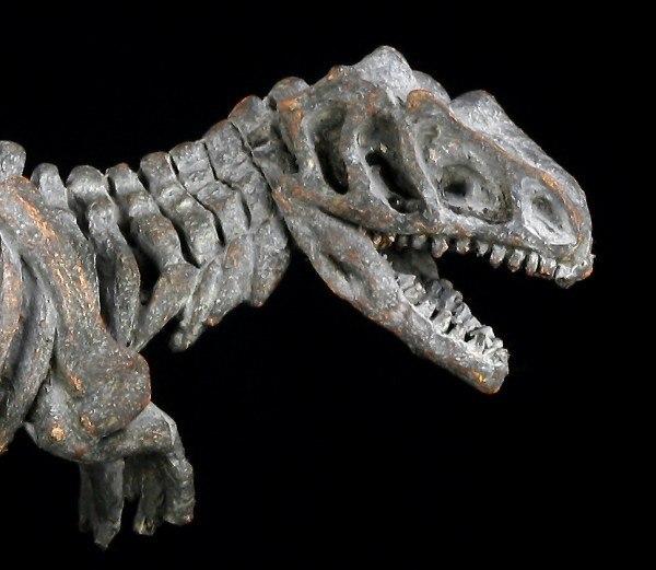 Dinosaur Figurine - Small Tyrannosaurus Rex Skeleton