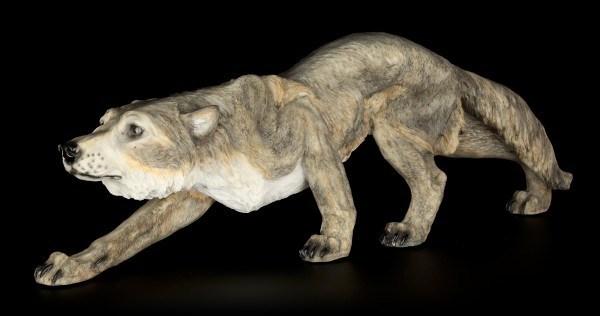 Wolf Figur - Neugierig und Ängstlich
