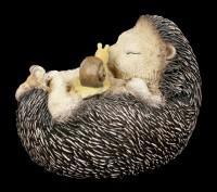 Garden Figurine - Sleeping Hedgehog with Snail