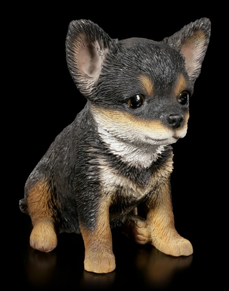 Dog Puppy Figurine - Chihuahua
