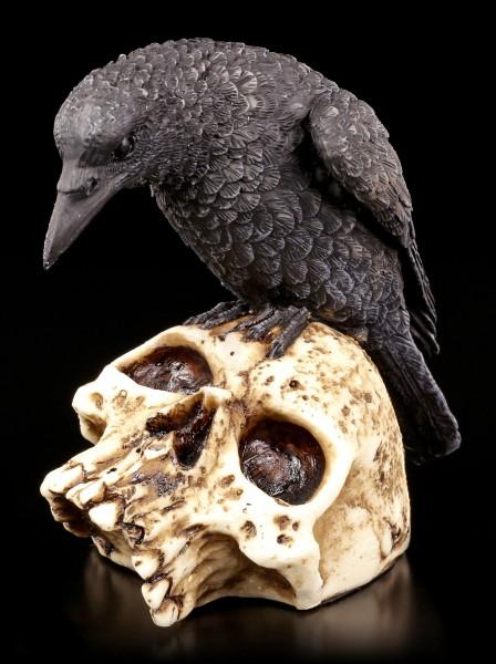 Raven Figurine on Skull